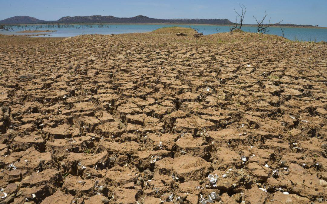Documentário alerta sobre as consequências da privatização da água no Chile, no Brasil e no Mundo