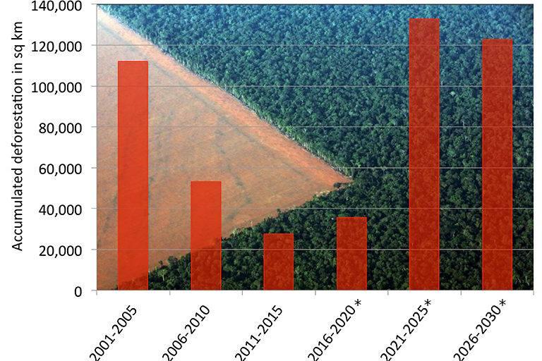 Bolsonaro e a Amazônia